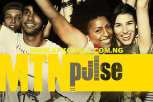 MTN Pulse 1.5GB For N500