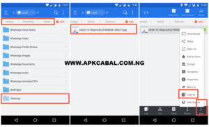 How To Save Whatsapp Status Video And Pictures On Iphone And