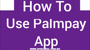 how to use palmpay